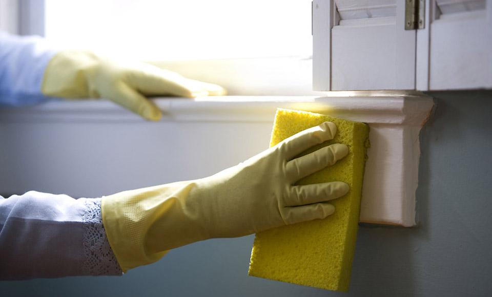 Чем мыть подоконники в домашних условиях